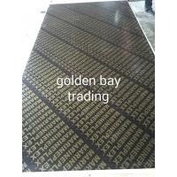 China China commercial plywood,film faced plywood,marine plywood,shuttering plywood on sale