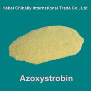 China Azoxystrobin/Amistar/Quadris  95%TC,25% SC  (agrochemical:fungicide/bactericide/bactericide/germicide) wholesale