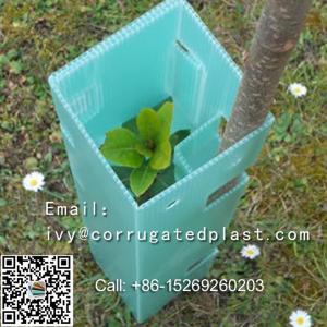 China UV Resistance PP Correx Plastic Sheet Corflute Sheet Tree Guard on sale