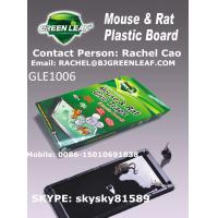 China High quality and cheaper plastic board mouse glue trap mouse rat trap Mobile:0086-15010691838 wholesale