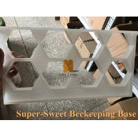 China plastic honey storage box for bee comb,hexagon shape comb honey cassettes with frame wholesale