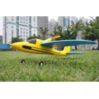 China Mini 4ch Sport Plane Dolphin Glider 2.4Ghz Radio Controlled RC Airplanes For Beginner wholesale