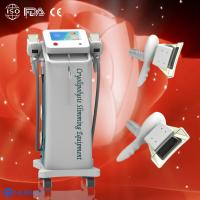 China Two Cryolipolysis handles Cryolipolysis fat freeze slimming machine to do fat reduction wholesale
