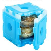 China New Food Grade HDPE Plastic Cool Cooler Small Ice Pack Set Of 6 For Kids Lunch wholesale