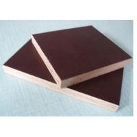 China china marine plywood prices wholesale