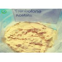 Buy cheap Healthy Yellow Trenbolone Powder Trenbolone Acetate / Tren Acetate For Safe from wholesalers