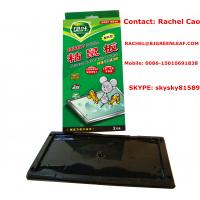 China High quality and cheaper plastic board mouse glue trap mouse rat trap  Email:rachel@bjgreenleaf.com wholesale