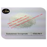 China 99% White Raw Steroids Powder Testosterone Anabolic Steroid Testosterone Isocaproate CAS 15262-86-9 For Weight Loss wholesale