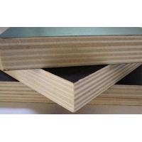 China Moisture Proof Brown Plywood Wall Paneling / Film Faced Shuttering Ply 2-30mm Thickness wholesale