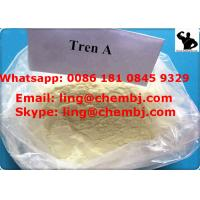 China BodyBuilding Tren Anabolic Steroid Trenbolone Acetate Tren A For Muscle Building wholesale