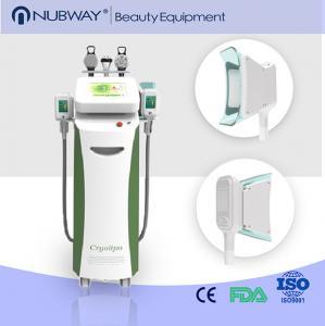 China 2015 newest body slimming cryolipolysis fat freezing machine on sale