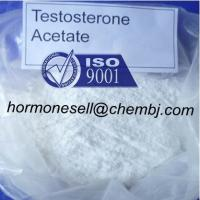 GMP standard Hormone steroid Testosterone Acetate for muscle growth powder