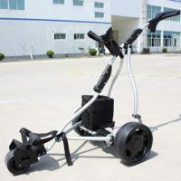 China Hot selling 3 Wheel Electric Golf Cart Trolley  wholesale