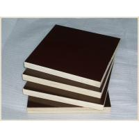 China Poplar And Eucalyptus Core Film Faced Plywood For Office Building Construction wholesale
