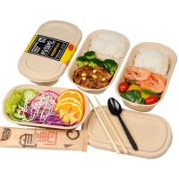 China 100% Compostable Food Container Sugarcane Lunch Box Bamboo Storage Boxes & Bins Eco-friendly Multifunction on sale