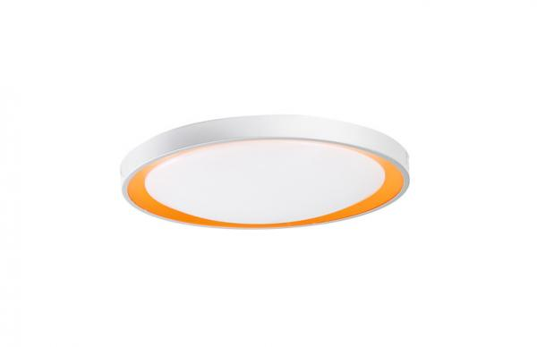 Circular Ceiling Light Images