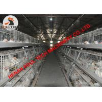 China Poultry Farming Battery Broiler Chicken Cage for Chicken Shed with Automatic Feeding System & Automatic Drinking System wholesale