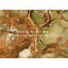 China Jade Design Pet Heat Transfer Film Plastic Foil Roll wholesale