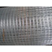 China thick wire welded wire mesh wholesale