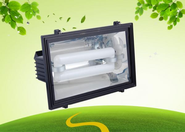 250Watt Induction Outside Flood Light Induction Lamp With Tempered