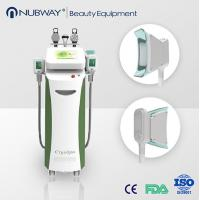 China Cryolipolysis with 2 handles body slimming machine /Fat removal/Weight loss wholesale