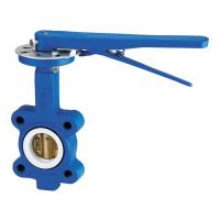 DN100 Cast Iron Industrial Wafer Butterfly Valve For Oil