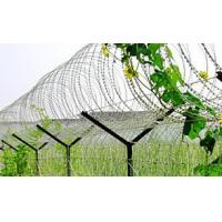 China Powder Coating Surface Stainless Steel Razor Wire , Razor Ribbon Wire BTO-10 15 22 wholesale