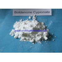 Buy cheap Anabolic Powder Boldenone Steroid Increase Protein Synthesis Bodybuilding Supplements from wholesalers