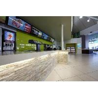 Cultured Stone Slate Wall Tile (T-S)