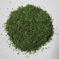 China Dehydrated Parsley Flakes,dried vegetable,spices 2-4mm on sale