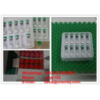 China Gonadorelin Acetate Growth Hormone Peptides , Injectable Peptides Bodybuilding wholesale