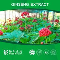 China high quality herbal extract-ginseng extract on sale