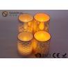 China Les diverses couleurs personnalisées ont mené le type de batterie des lumières 2*AA de pot de maçon wholesale