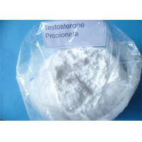 China Supply Free Sample Test Propionate Powder Body Shape Testosterone Propionate on sale