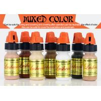 Semi Paste Mixing Colors Tattooing Ink Eyebrow Tattoo Ink Auxiliary Color