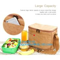 China Custom Eco friendly tyvek Lunch bag Insulated Cooler bag,tyvek kraft paper insulated aluminum foil lunch box bag with sn wholesale