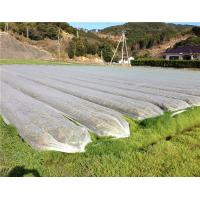 China UV Resistance Agriculture Non Woven Fabric For Plant Keeping Temperature wholesale