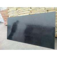 China Film Faced Plywood/Laminated Plywood/Tego Plywood/Form Seal Board/Concrete Form Plywood on sale