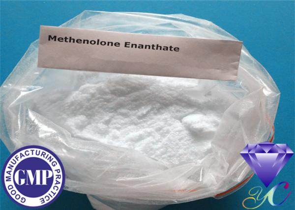 Quality Le stéroïde cru de CAS 303-42-4 saupoudre le stéroïde anabolisant Methenolone Enanthate for sale