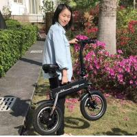 China Adult 2 Wheels Foldable Electric Scooter , Outdoor Activity Electric Bicycle wholesale