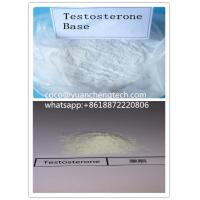 Buy cheap Test Base Cas 58-22-0 Testosterone Steroids For Bodybuilding / Muscle Gaining from wholesalers
