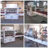 China High Speed Bottle Corrosive Liquid Filling Machine For Detergent , Toilet Cleaner wholesale