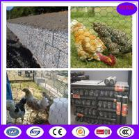 China Corrosion and oxidation resisting wire netting chicken mesh wholesale