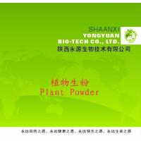 Shaanxi Yongyuan Bio-Tech supply Herbal Powder,Achyranthes aspera Powder