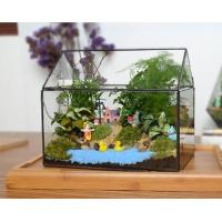 China Cuboid Plant Decorative Glass Craft Micro Landscape Smooth Surface For Live Plants wholesale