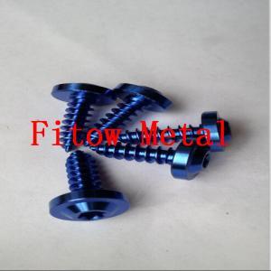 China Colorful Bike Grade 5 Torx socket Titanium Self Tapping screws ST4X12mm wholesale