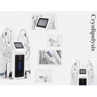 Buy cheap OEM and ODM service body slimming cryoliplysis fat reduction machine from wholesalers