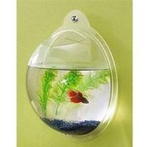 China acrylic slatwall fish aquarium wholesale