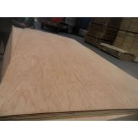 China plywood for  used for contruction wholesale