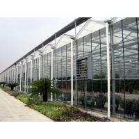 China Sound Insulating Commercial Glass Greenhouse Good Display Effect Beautiful Appearance wholesale